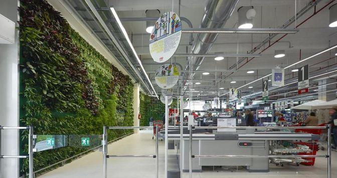 L'interno della Coop di Formigine (Modena) valorizza pareti verdi e luce naturale