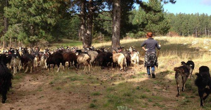 """Una delle donne pastore ritratte dalla regista Anna Kauber che ha raccolto più di cento storie inedite in un viaggio di 17mila chilometri per l'Italia. Diciotto storie sono diventate il film """"In questo mondo"""""""