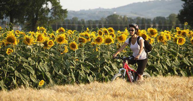 In bici nei pressi di Spello (PG), Umbria (Foto:Enrico Caracciolo)