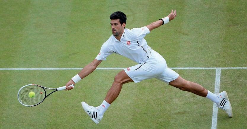 Campioni. Il detentore  del titolo, il serbo Novak Djokovic