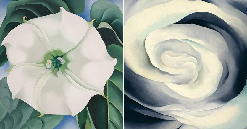 Da sinistra: Georgia O'Keeffe - Jimson Weed/White Flower No.1, 1932. Abstraction White Rose del 1927