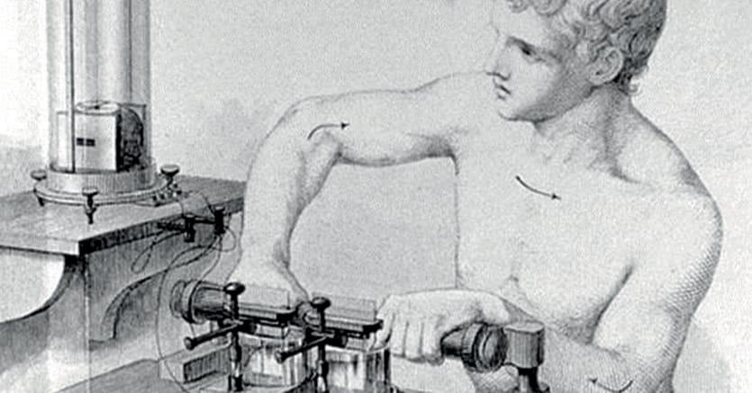 Apollo al lavoro.Illustrazione dal volume di  Emil du Bois-Reymond «Untersuchungen über thierische Elektricität » (Ricerche sull'elettricità animale) , Reimer Berlin 1884 vol.II