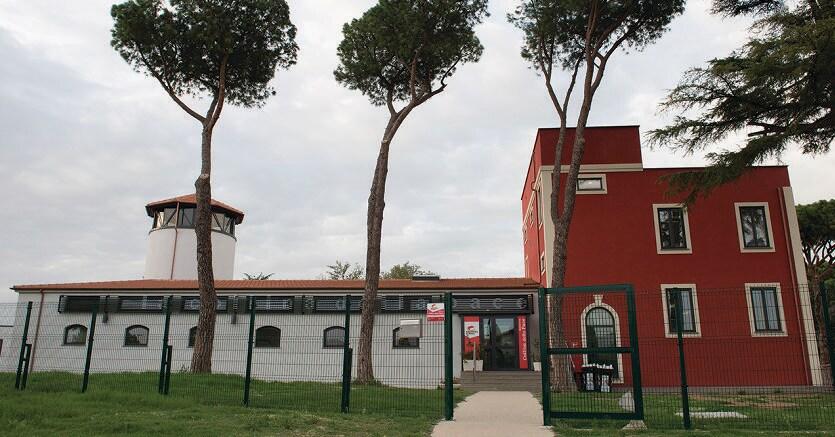 Borgata. La nuova biblioteca fotografata di Roberto Scardoni