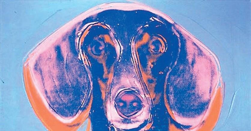 Inseparabili.Archie, il bassotto di Andy Warhol   ritratto dall'artista (1976)