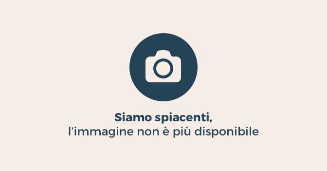 Giornata della Memoria 2017, Mattarella: