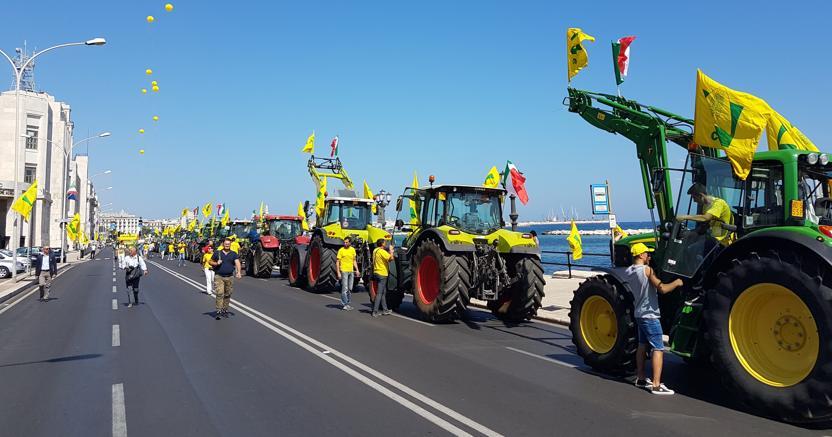 Bari, un momento della manifestazione della Coldiretti in difesa del grano (Ansa)