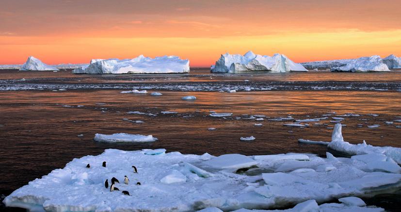 In Antartide nascerà l'area protetta più grande al mondo