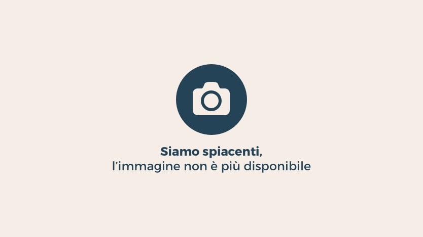 Beppe Grillo in soccorso di Antonio Cozzolino e del M5S di Civitavecchia