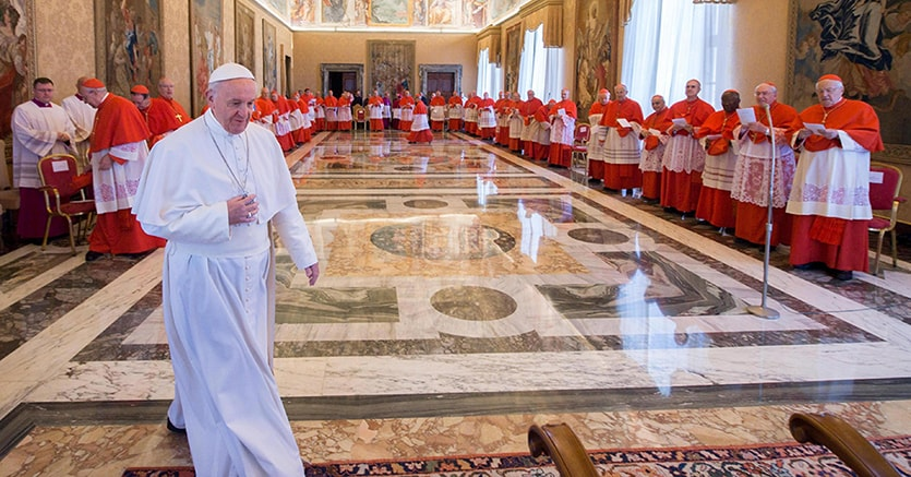 Papa Francesco incontra Sisi al Cairo