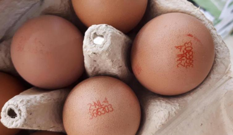 Uova contaminate, nella lista nera anche l'Italia