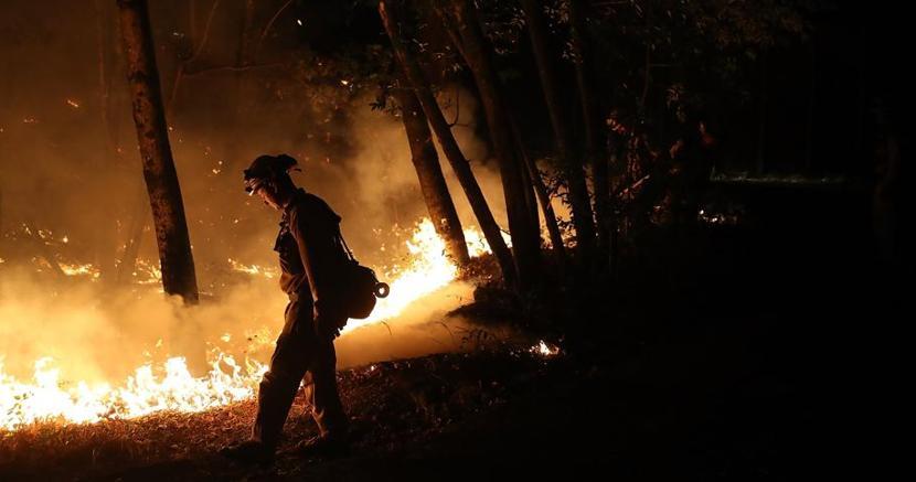 Un vigile del fuoco durante un'operazione. Le fiamme hanno causato «almeno 31 vittime» i n California (Afp)