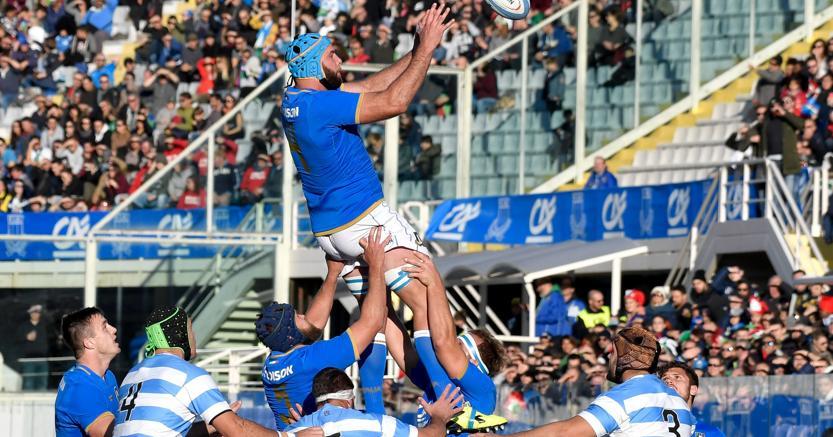 Rugby, Italia-Argentina finisce 15-31: azzurri sconfitti al Franchi