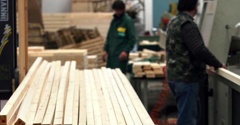manutenzione dei boschi e imballaggi tracciabili: due progetti