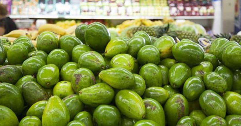 Paniere Istat: entrano avocado e mango, fuori il canone Rai