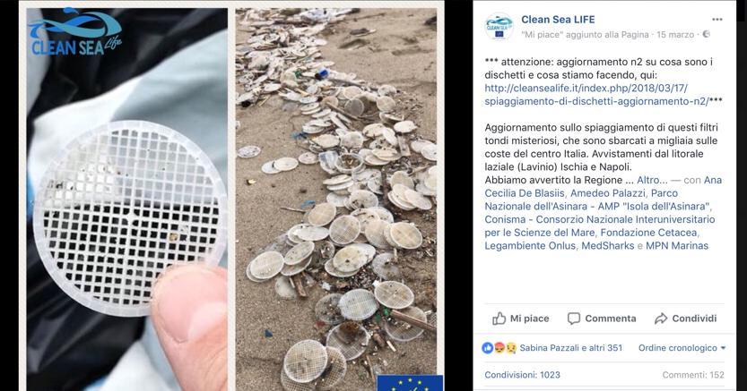 Il giallo dei dischetti sulle spiagge: allarme ambientalista e boom di segnalazioni