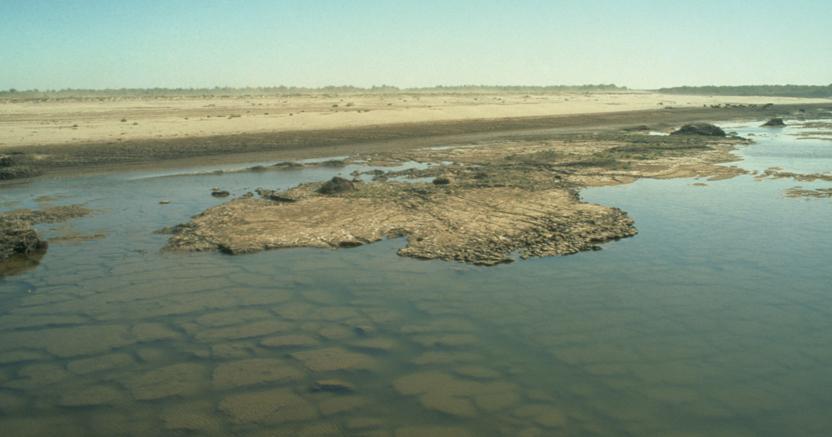 Lago Aral (Agf)