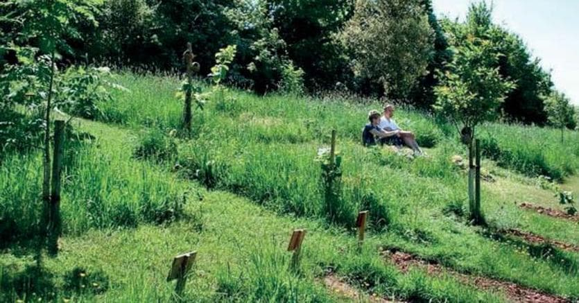 Il Westall Park Natural Burial Ground, in Inghilterra
