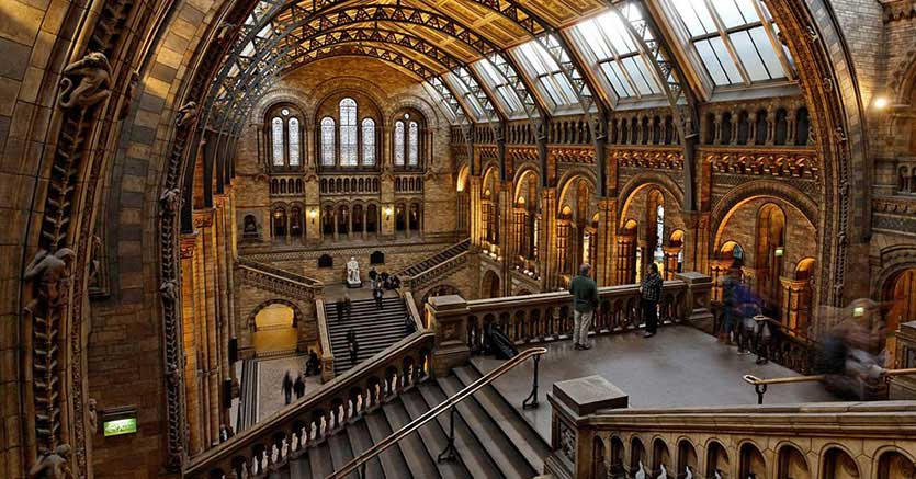 Il Natural History Museum di Londra