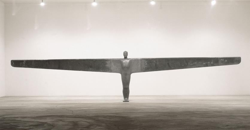 Anthony Gormley, A Case for an Angel I