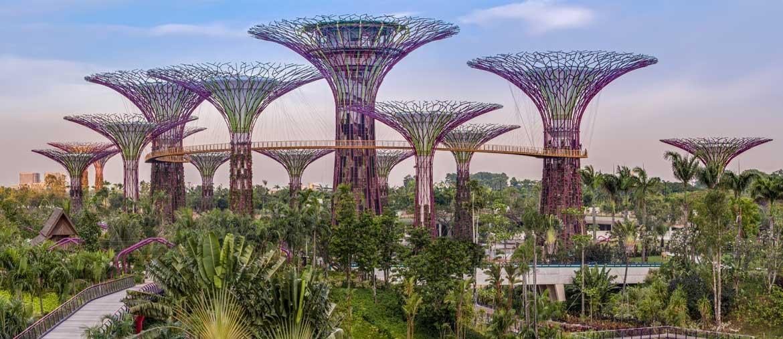 A singapore nei giardini del futuro il sole 24 ore - Il sole nel giardino ...