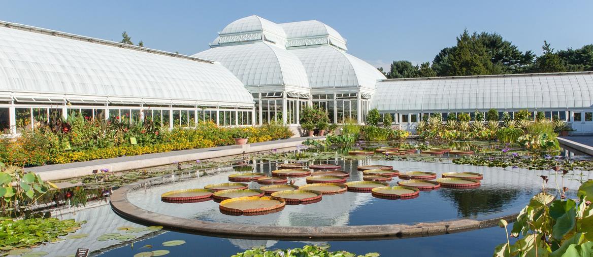New York Botanical Garden, nel Bronx, ospita più di un milione di piante su una superficie di 100 ettari. (© NYC & Company/Christopher Postlewaite)