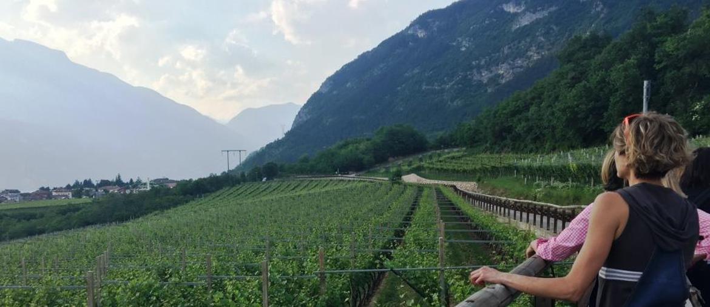 (ph Archivio Strada del Vino e dei Sapori del Trentino)