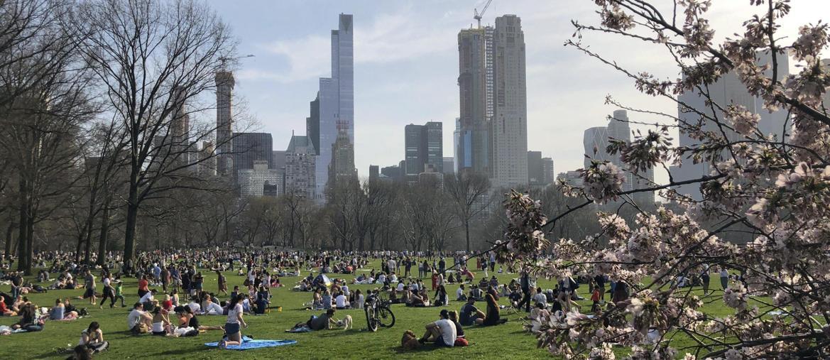 a piedi nudi nel parco central park vietato alle auto dal 27 giugno il sole 24 ore. Black Bedroom Furniture Sets. Home Design Ideas