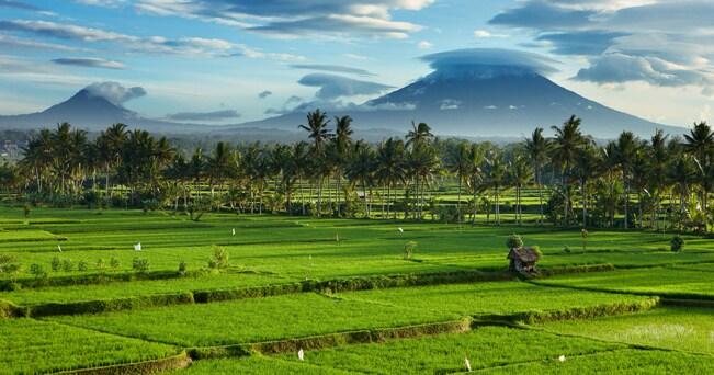 Bali (foto Alamy/Milestone Media)