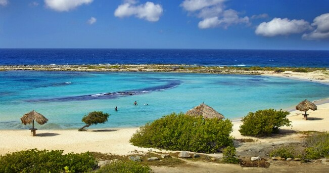 (ph aruba tourism authority)