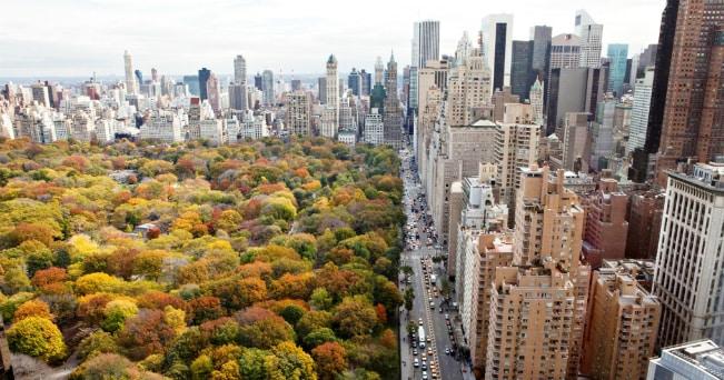 La nuova Manhattan, tutti gli indirizzi