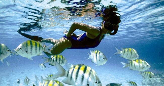 Una ragazza fa snorkeling a Paynes Bay, sulla West Coast dell'isola