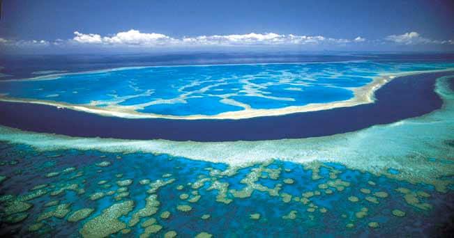 Australia tour da sogno tra coralli e foreste il sole for Immagini coralli marini