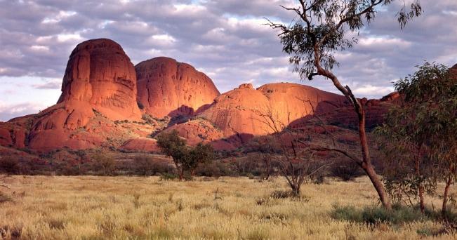 Case Cinematografiche Australiane : Giorni nelle farm australiane film veneto film network