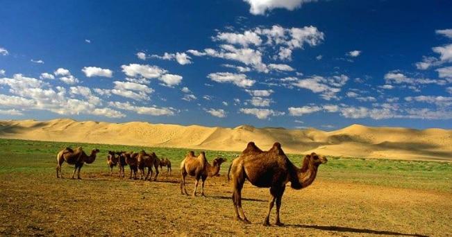 Il Gobi è coperto da sabbia, lagune e rocce (foto archivio Kel12)