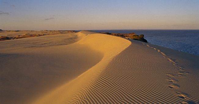 Le dune della penisola curlandese, patrimonio Unesco (ph Lithuania State Department of Tourism)
