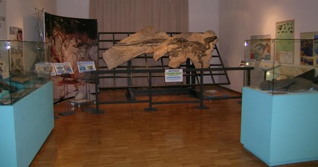 Il dinosauro Antonio, al Museo Civico di Storia Naturale di Trieste