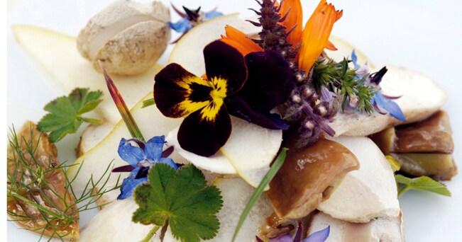 Insalata di funghi e fiori della Malga Gostner