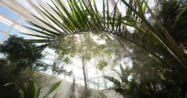 Una serra del Giardino della Biodiversità a Padova