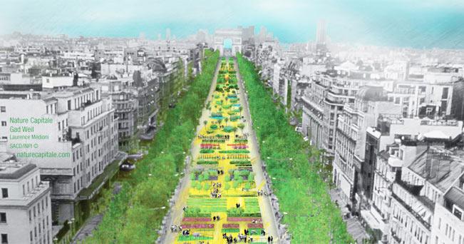 Festa della biodiversità: la città diventa giardino - Il Sole 24 ORE