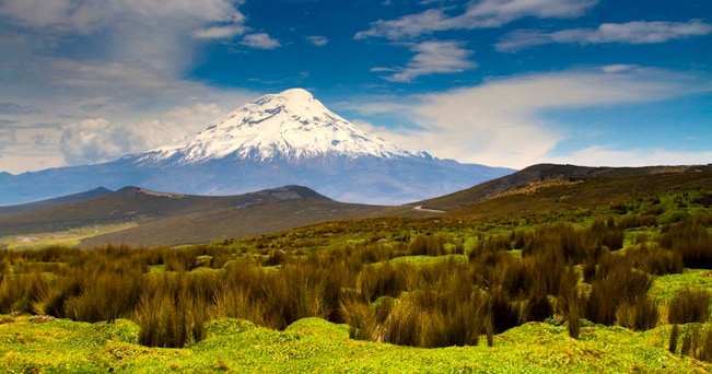 Veduta della cima innevata del vulcano Chimborazo (foto Aldo Pavan)