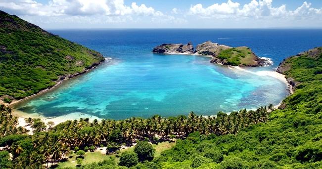 Veduta di una baia circondata dalla vegetazione tropicale in Guadalupa (foto Chaussende Denis / Alamy/Milestone Media)