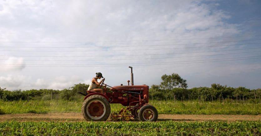 L'ira dei farmer contro Trump: i sussidi arrivano solo ai grandi