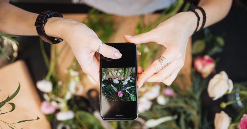 La startup che vuole creare aste digitali per i fiori, con buona pace dell'Olanda