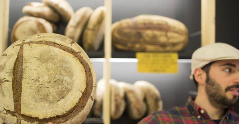 Da Forno Brisa a Benvenuto, così il crowdfunding fa crescere le startup del food