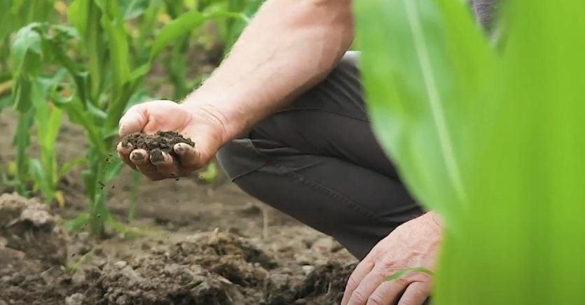 Cresce l'agricoltura simbiotica: obiettivo del consorzio e-commerce e corner dedicatii
