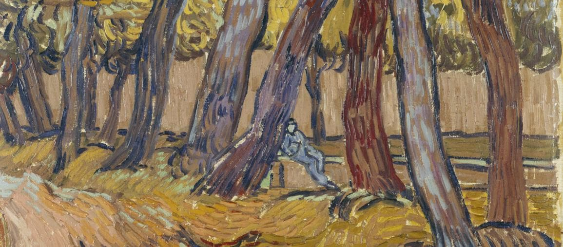 Path in the Garden of the Asylum (1889) Oil paint on canvas, 614x504mm. Collection Kroller -Muller Museum , Otterlo