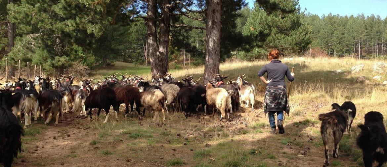 """Terre alte.Una delle donne pastore ritratte dalla regista Anna Kauber che ha raccolto più di cento storie inedite in un viaggio di 17mila chilometri per l'Italia. Diciotto storie sono diventate il film """"In questo mondo"""""""
