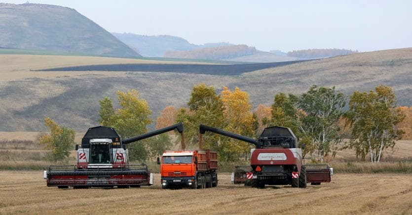 Raccolta di grano in un campo della regione di Krasnojarsk, Siberia (Reuters)