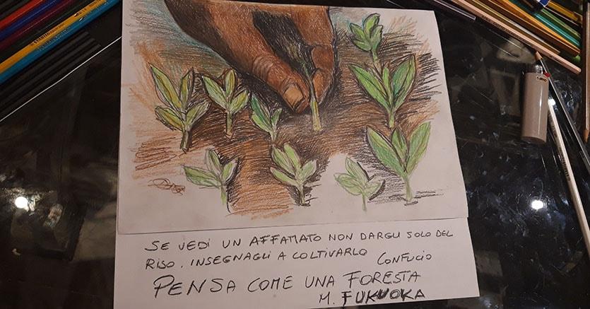 Earth Day Diciassette Street Artist Al Pincio Per I 17