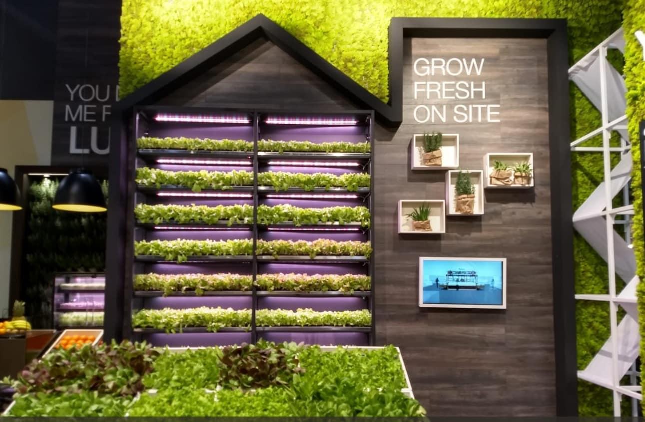 Piccole Serre Da Casa micro-ortaggi, la serra diventa portatile. e sbarca nei